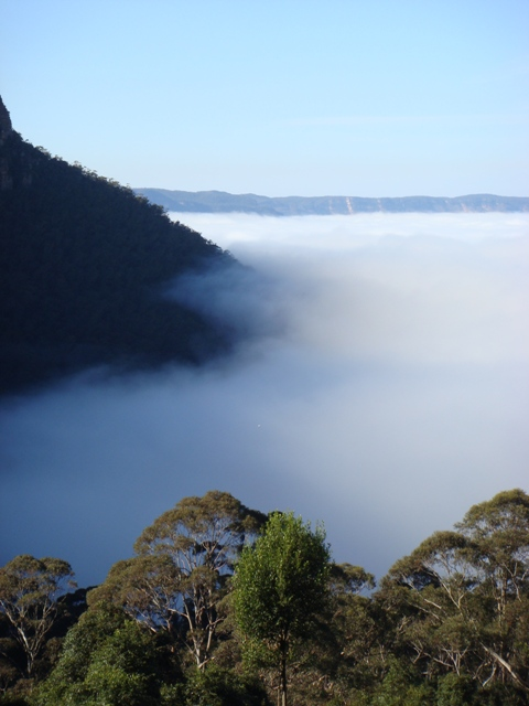 Misty Blue Mountains - Sydney