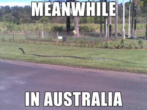 moving to Australia